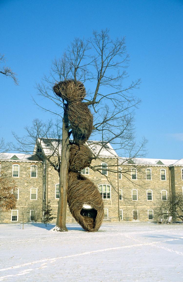 États-Unis (Swarthmore College), 2000