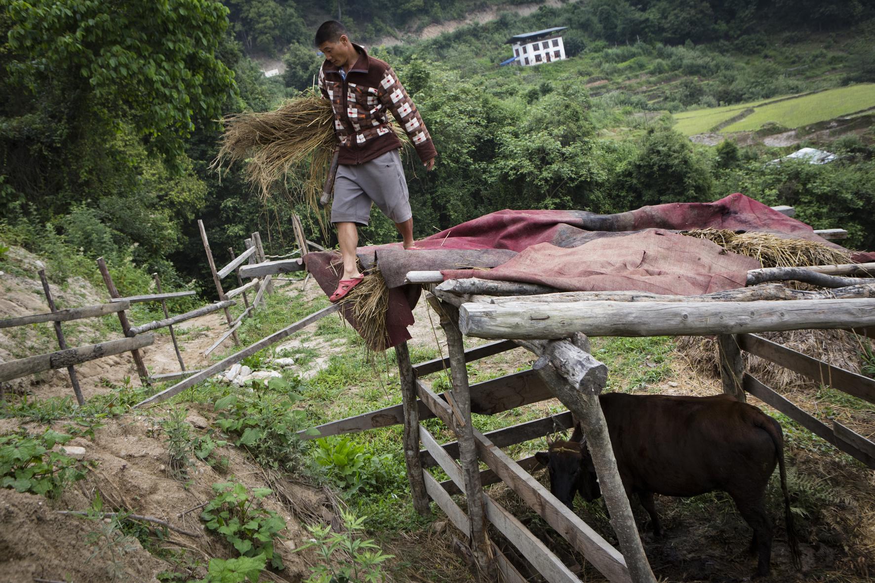 Bhoutan, les sillons du bonheur. Photographie : Éléonore Henry de Frahan.