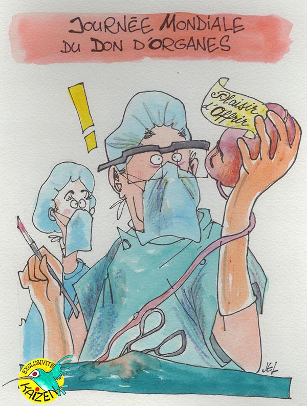 Don d'organes dessin