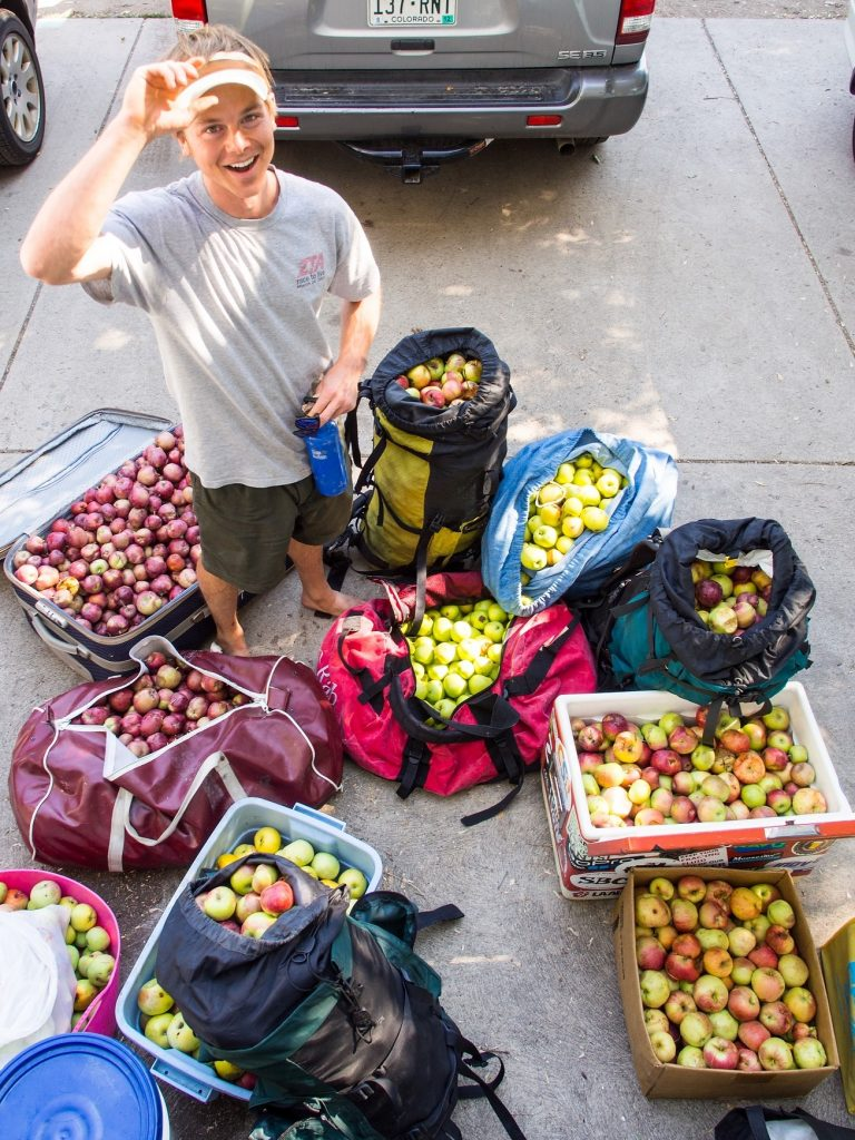 Jeff Wanner stands among the 500 pounds of apples (Malus domestica) he picked from neighborhood trees in a couple hours with Falling Fruit co-founder Ethan Welty in Boulder, Colorado on September 9, 2012. The duo pressed the apples into cider using Welty's apple press and fermented the juice into hard apple cider. http://fallingfruit.org/locations/3345 http://fallingfruit.org/locations/3448 http://fallingfruit.org/locations/3509 http://fallingfruit.org/locations/3510 http://fallingfruit.org/locations/3355