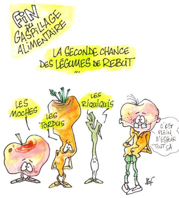 Image result for gaspillage alimentaire dessin