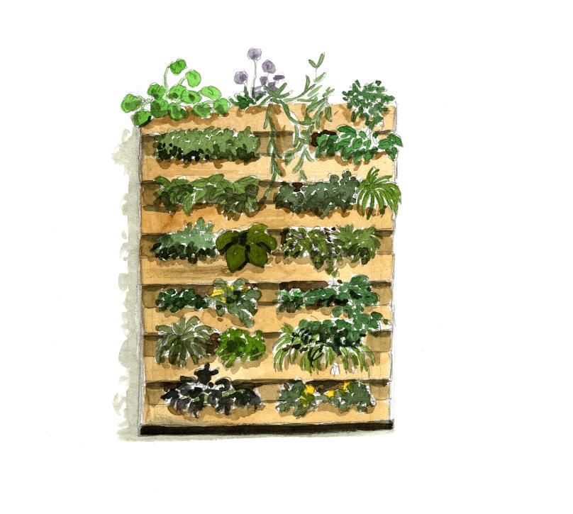 transformer une palette en jardin vertical kaizen. Black Bedroom Furniture Sets. Home Design Ideas