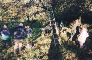Yohann An Nedeleg (de dos à gauche), ramasse des pommes en 2002 à Plesidy, entouré de deux autres générations.